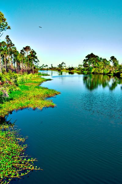 Lake Lagoon