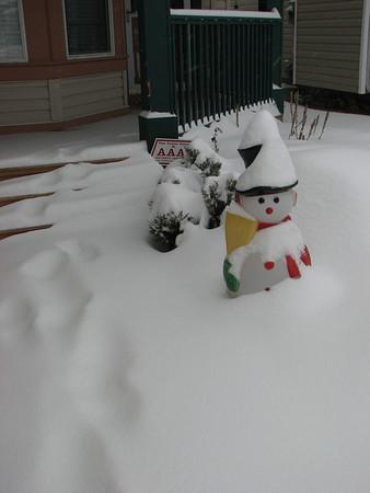 Winter/Spring 2009