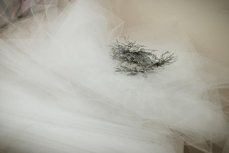 Ricci Wedding_4MG-3727.jpg