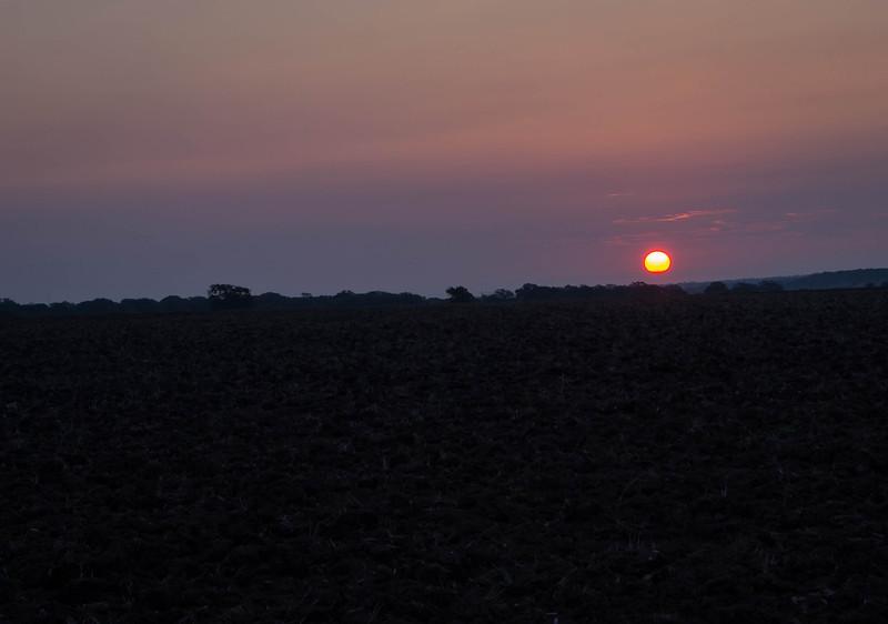 Sunrise 7-1.jpg