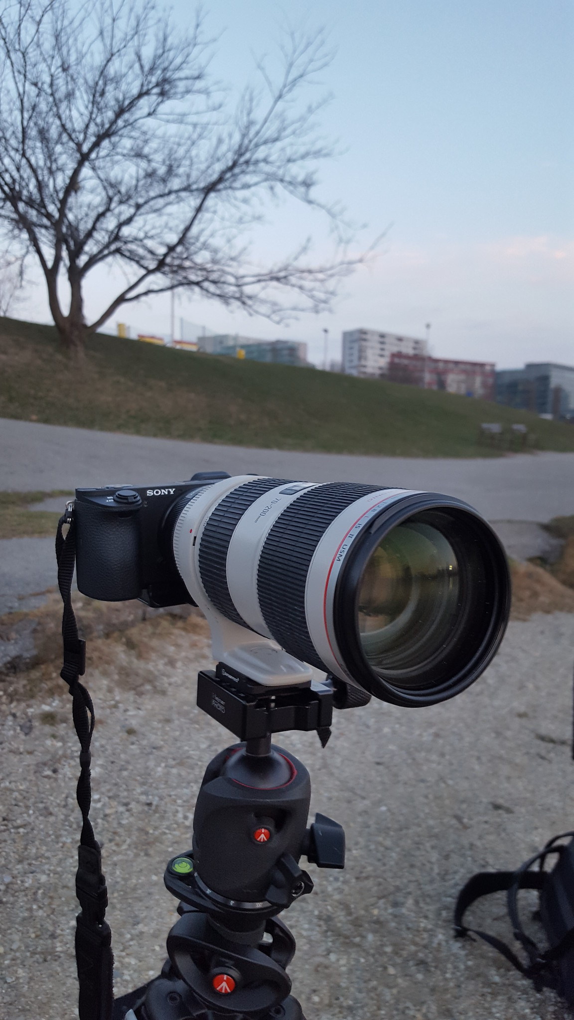 Manfrotto 055CXPRO4 review