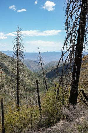 Parker Creek Trail