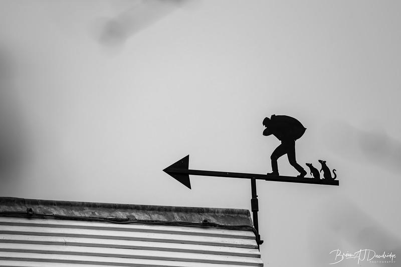 untitled shoot-0816-Edit.jpg