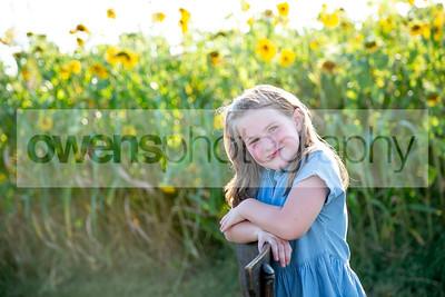 wilson sunflowers
