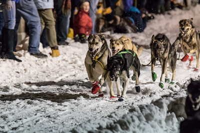 Wyoming Stage Stop Sled Dog Race