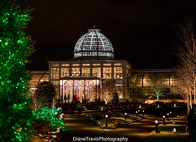 Garden Festival of Lights 2014 ~ Lewis Ginter Botanical Garden