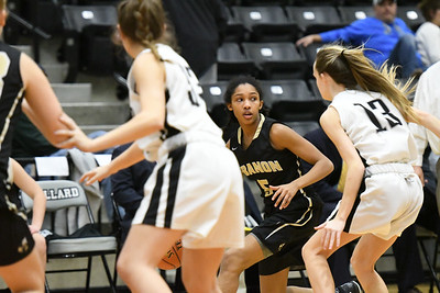 Basketball - LHS Girls 2018-19 - Willard (Full Res)