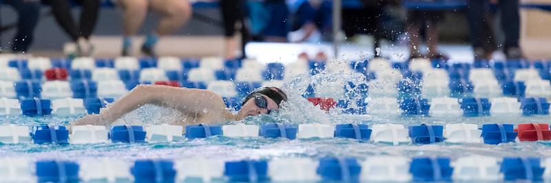 2018_KSMetz_Feb09_SHS Centenial League_Swimming_NIKON D5_2191.jpg