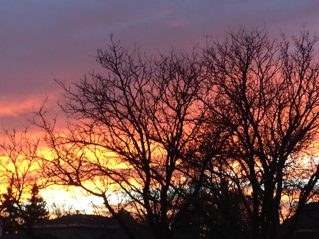 . A super Bronco Sunrise!