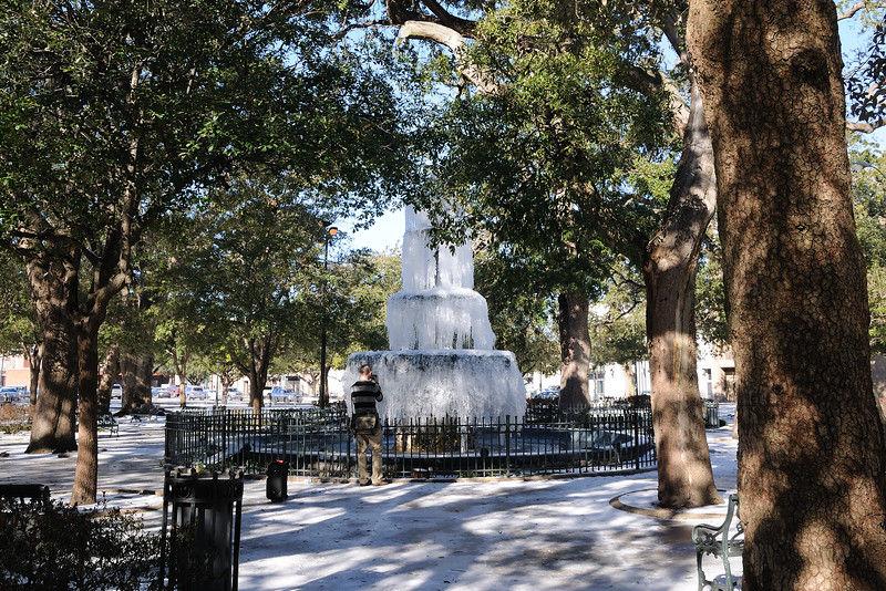 "Well, the icy sidewalks didn't keep me from venturing across the street to Bienville Square to take some photos of the frozen fountain.  I'd imagine that hasn't happened in more than 30 years.  But, again, everything was ice.  I walked on the grassy ice, but watched as the ""younger folks"" skated through the icy sidewalk like they had done it every other day of their life."