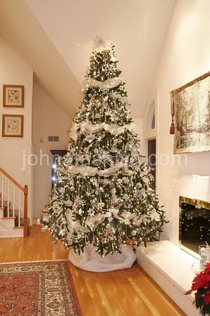 The Brown's Christmas Tree