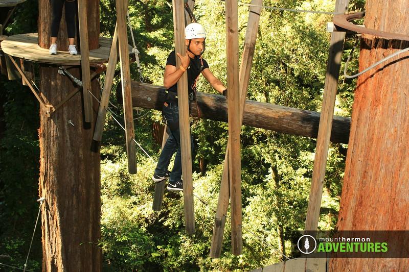 sequoiaportrait_1559086022062.jpg