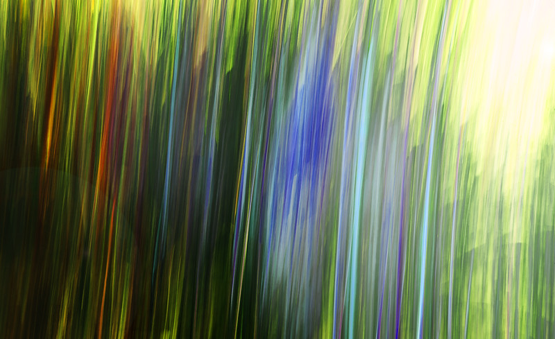 Motion Flow I