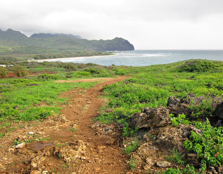 Kauai'10_S90_268.jpg
