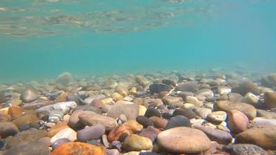 Torch Lake 2020