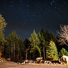 Mountain Stars © Amy Gallatin, all rights reserved.