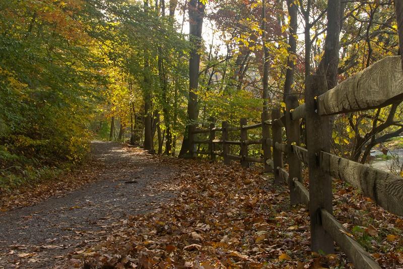 leaves_covered_trail_satish_20_20141019_1003318554.jpg