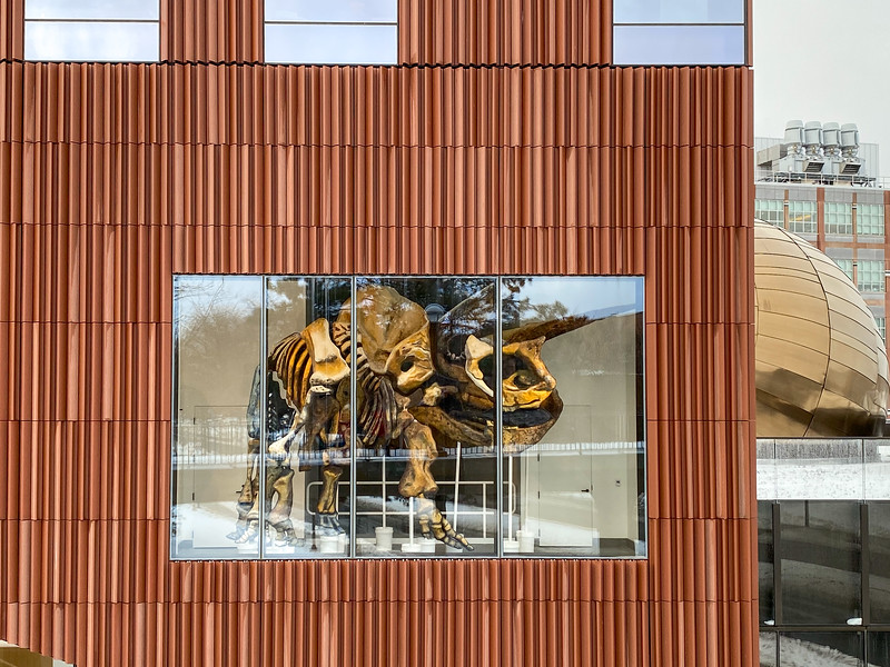 University of Michigan Museum of Natural History