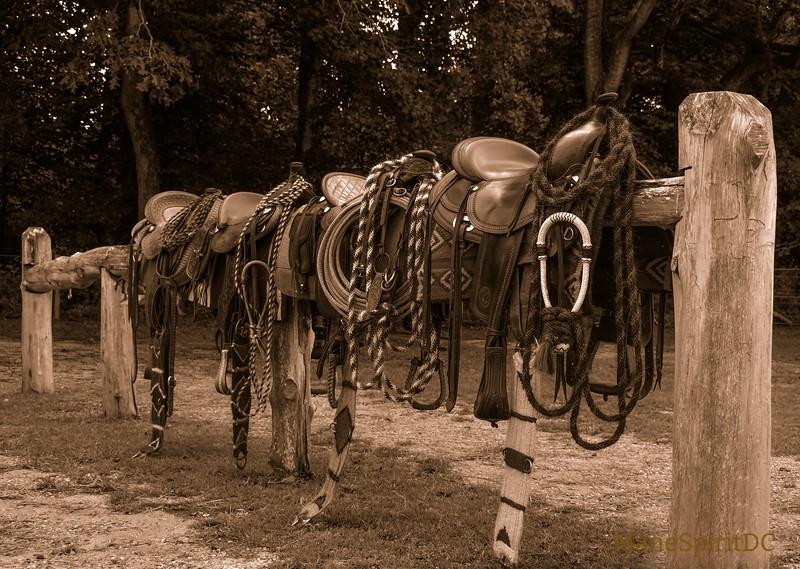 western 13.jpg