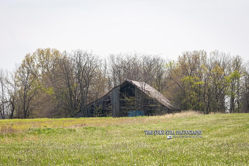 KC Landscape-5.jpg
