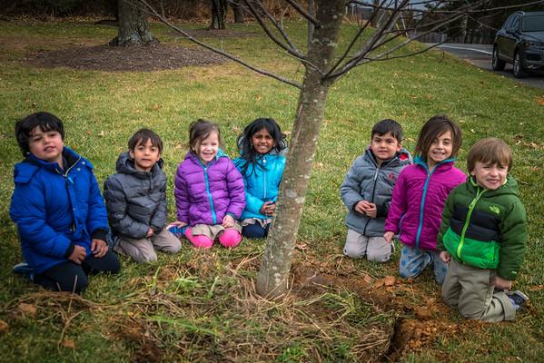 Tree Planting Blog Photos