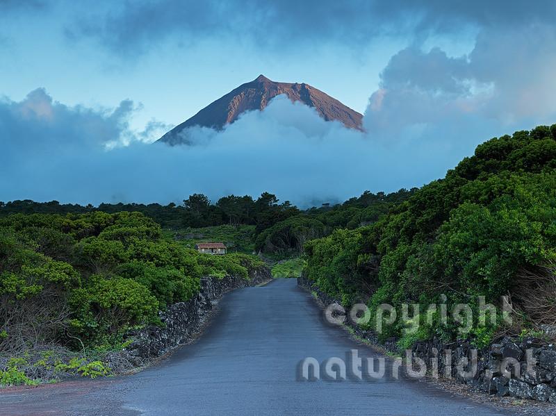 Vulkan Pico ragt aus dem Nebel, Straße zum Vulkan, Insel Pico, Azoren, Portugal,