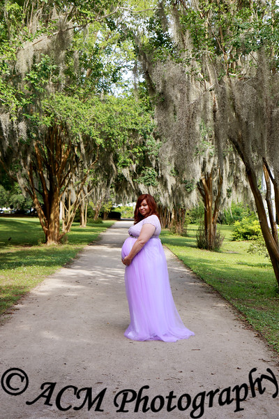 Lacey Maternity Session