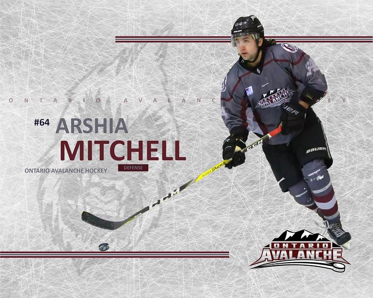 MITCHELL_Avalanche.jpg