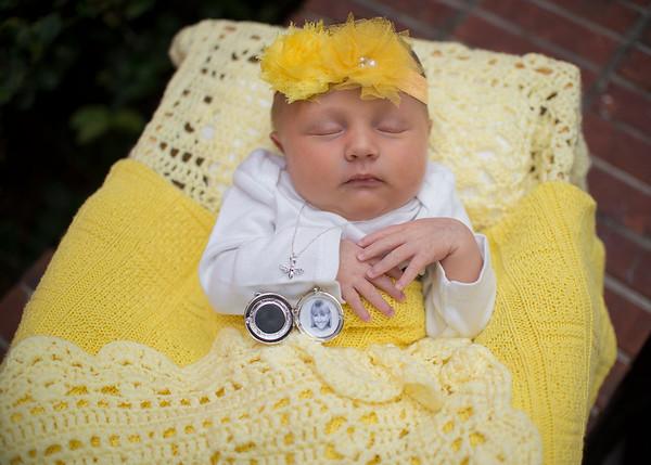 Ava Moxie Newborn Session