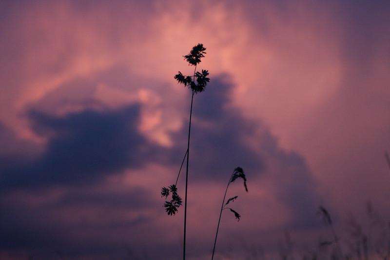 red-clouds-dawn_8784169800_o.jpg