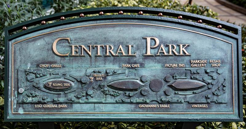 Central Park - June 2017