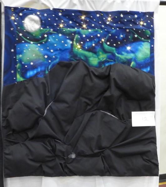 2015 03 CCQG Challenge Constellations - 12