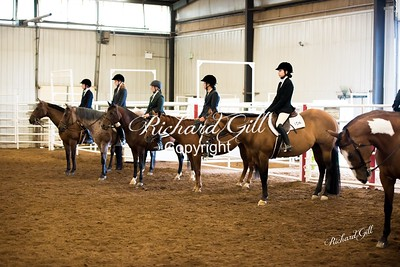 4H Shows