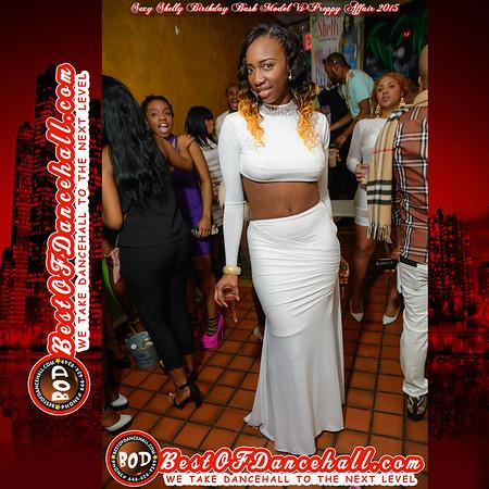 2-7-2015-BRONX-Sexy Shelly Birthday Bash Model Vs Preppy Affair 2015