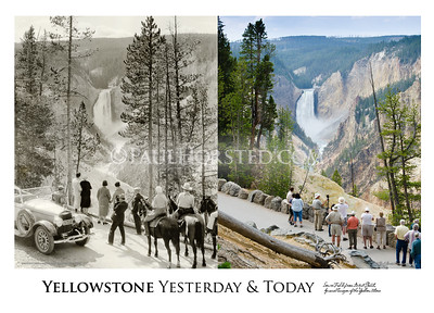 "Prints from ""Yellowstone Yesterday & Today"""