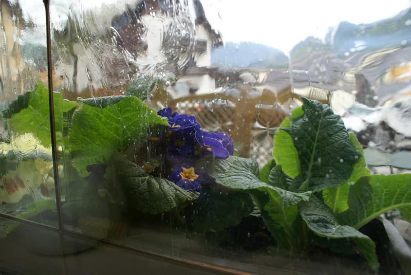 Window from our hotel in Kranjka Gora.