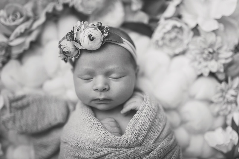 Kaylyn NewbornBW-31.jpg