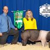 Reserve Champ Swine