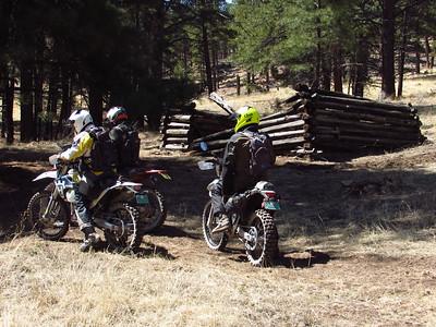 Zuni Mtns. - NE Zuni's DS Ride  4-9-18