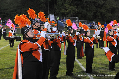 Jonesville band at Springport game