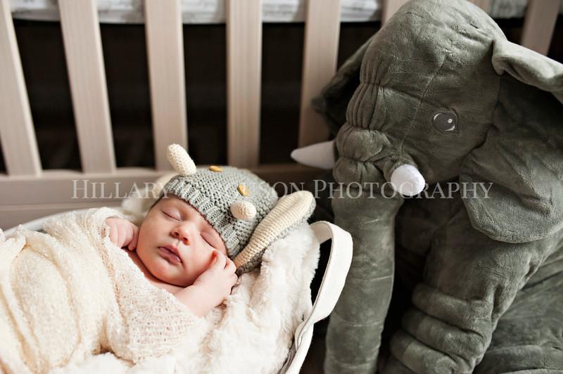 Hillary_Ferguson_Photography_Carlynn_Newborn018.jpg