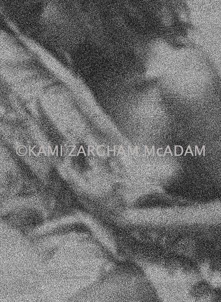 Intimate©Kami Z.McAdam 0056.jpg