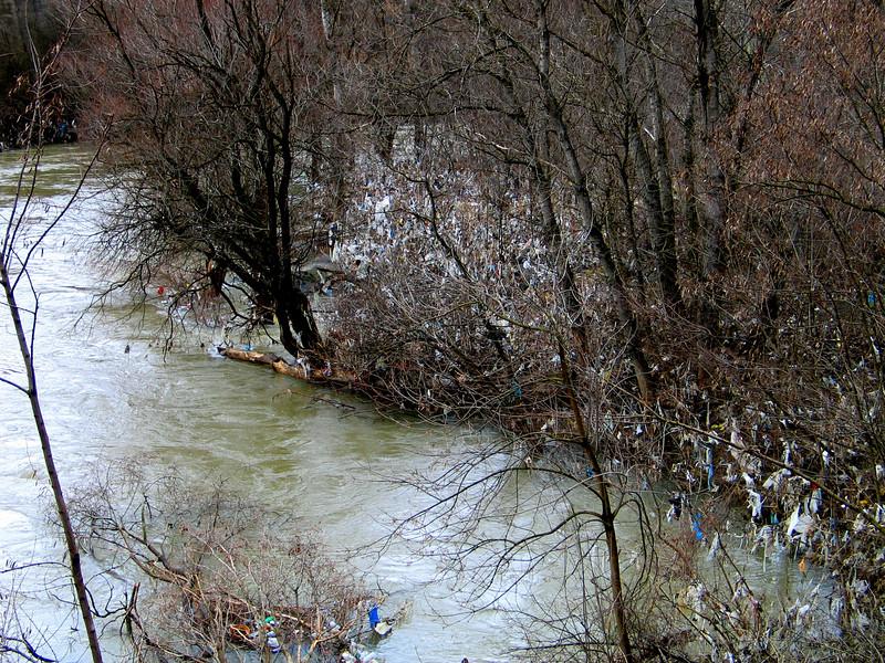 Mitrovica River.jpg