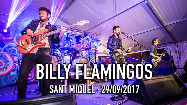 BILLY FLAMINGOS SANT MIQUEL