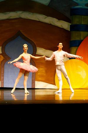 Nutcracker Professional Dancers