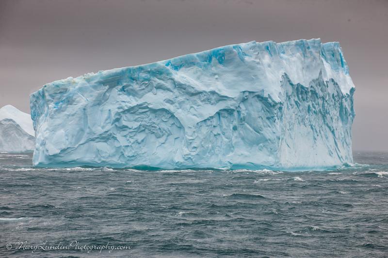 Antarctic-67