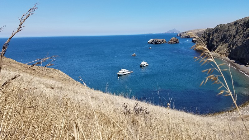 Clifftop views when hiking in Channel Islands National Park, California
