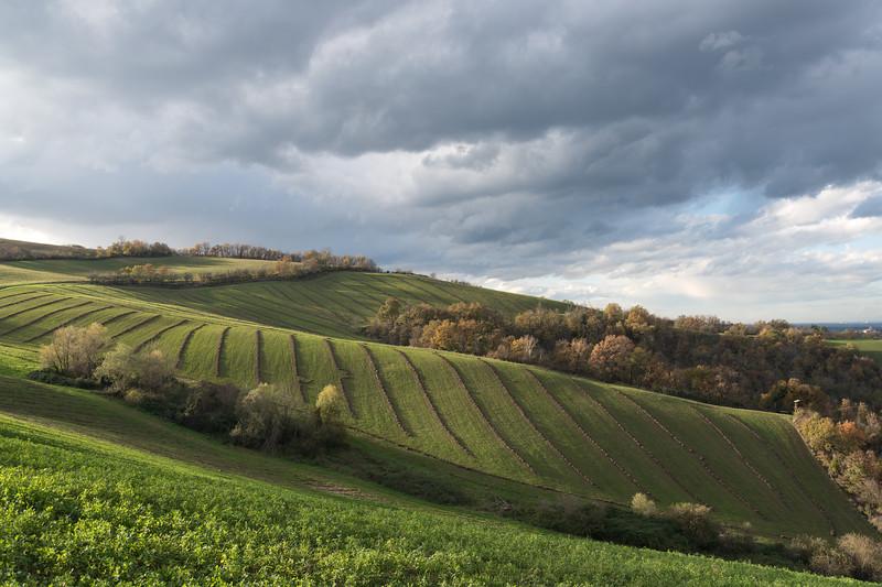 Appennino Reggiano - Albinea, Reggio Emilia, Italy - November 16, 2014