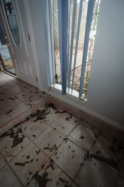 Subirats Home Deer damage-3969.jpg