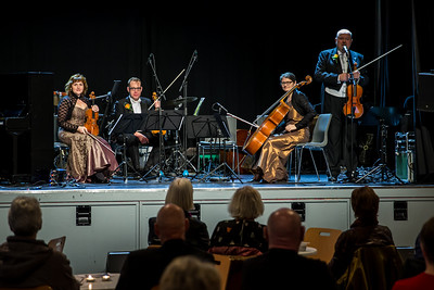 Rosegarden String Quartet 14/11 2015